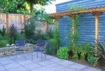 Garden Redesign / by Cynthia Berry