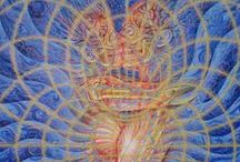 "Alex Grey // Art / Once a medical artist at Harvard, Alex Grey (born Alex Velzy on November 29, 1953) has, over the last thirty years, painted ""theocentric"" personages based on his own experiences of meditation, prayer and use of LSD. Alex Grey is a Vajrayana practitioner."