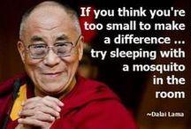 Dalai Lama // Quotes