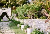Ceremony Ideas / by Conservatorie Floral