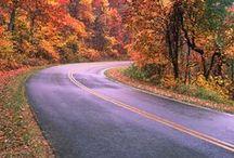Great Smokey Mountains / by Linda Langevin