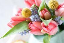 Flowers / by Heidi Van Woerkom