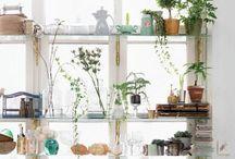 House Inspiration / ideas for décor and design