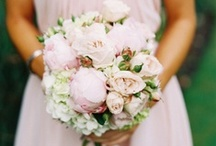 floral design  / by Jolene Lee