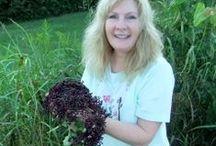 Elderberries / about the use and benefits of elderberries