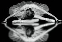 Photography / by Diane Guglielmi-Smith