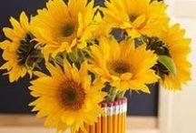 Floral Arrangement Ideas! / by Janice's Grower Direct