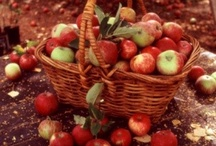 Apples Apples Apples / by Lm Jones