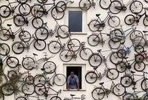 bike / by Zoë François | ZoeBakes