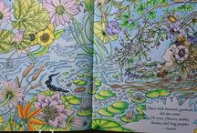 My Colouring.