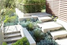 Garden / Garden, patio and landscaping inspirations. / by Denver Realtor | Olivia Maddox