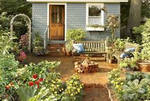 Garden perfection / Dig in the dirt-GARDEN