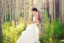 White Wedding / Romantic locations, decorations, dresses and veils.  / by Olivia Maddox