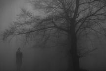 All That Fog