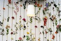 Wallpapers We Love