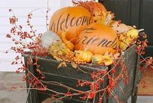 FALL-ing in Love with the season!