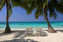 Beach Weddings / by Beckett Travel