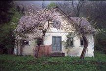 Cottages / Rustic Charm