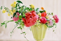 florals / by jocelyn