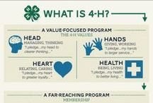 All Things 4-H! / What is happening in the world of 4-H?  Find out here! / by Ruby Miller