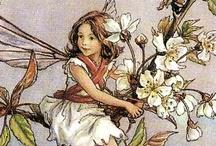 The Flower Fairies - Cicely Mary Barker