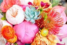 Tablescapes and Floral Arrangements / by DJae Amidon-Brent