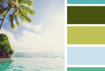 Great color combo's for scrapping, cards or paint! / by Vickey Russo