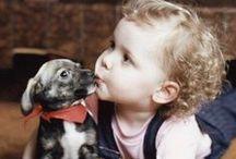Amor Incondicional  / Estos son las fotografías de unos tiernos bebés junto a sus mascotas, ellos se divierten y demuestran el amor incondicional que se tienen, sin duda una amistad que se transmite de generación en generación. #bebé #baby #perro #dog #can