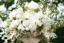 White Wedding Theme / White ideas and themes for wedding venue decorations, bridal accessories and stationery