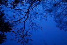 Bleu / by Valérie sénéchal