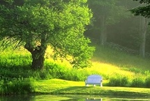A Peaceful Place to Pray / by Sherry Adams