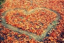 FALL in love <3 / by Cristina De Leon