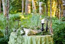 Woodland Themed Wedding / Inspirational ideas for woodsy forest themed weddings (including some current tree inspired ring designs)