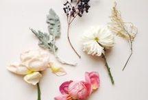 Bloom / by Petit Mimi