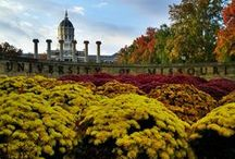 Mizzou Campus / It's big, it's gorgeous, it's historic and it features the second most photographed spot in the state of Missouri!