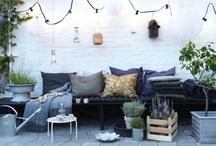 Garden & Terrace  / by Petit Mimi