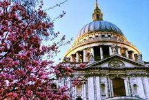 London - Living Large / Must-see London.  Living, sightseeing and dining in style!  / by NICOLA