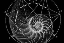 GEOMETRY : Fibonacci + Sequential Mathematical Patterns / Geometry : Fibonacci + Sequential Mathematical Patterns