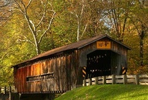 covered bridges / by Nancy Risely