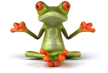 Love Frogs / by Marie Murgatroyd