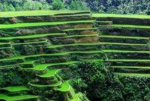 Philippines ;)