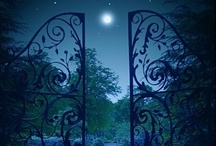 Night Lights / by Carmen