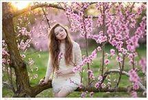 Theme: blossoms