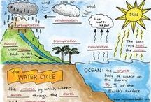 Biology-Ecology / Properties of ecosystems, biomes, adaptations, cycles of matter