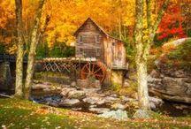 Autumn's glory / by Marguerite Thompson