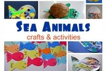 Kids - Beach & Sea Life