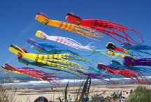 Go Fly A Kite / by Suzanne Christopher