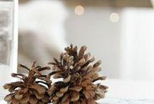 Holidays / Winter christmas