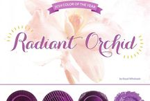 PANTONE Radiant Orchid / 2014 PANTONE Color of the Year, Radiant Orchid / by Jennifer Mancuso