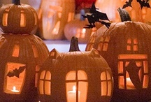 Trick or Treat! / Halloween & Fall / by Kate Kuss